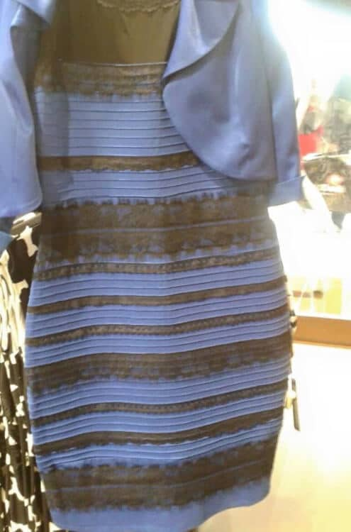 10 Best Responses to 'What Color is This Dress' Debate